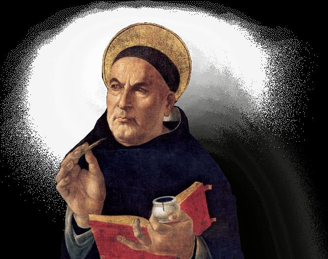 Aquinas and Evolution